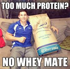 Protein Powder Meme - free sle orgain organic protein powder is back freebie chest