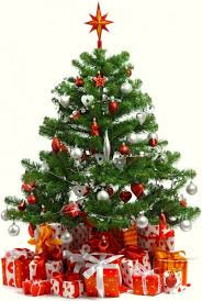 christmas tree pic christmas tree images free stock photos download 14 658 free