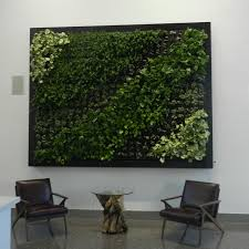 How To Build A Vertical Wall Garden by How To Create A Living Wall In Your Home Hgtv