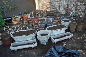 garden design garden design with planting hanging baskets flower