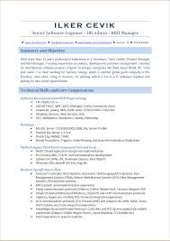Example Of Core Competencies In Resume Sql Server Dba Sample Resumes 19 Sample Resume For Server