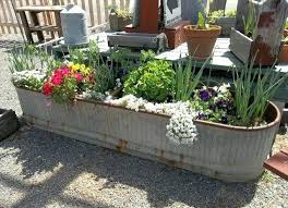 Container Vegetable Gardening Ideas Unique Container Garden Vintage Can Containers Creative Container