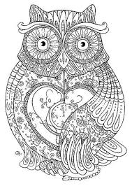 owl coloring pages adults printable kids colouring pages