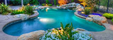 free form pool designs types of pools and pool design premier pools spas