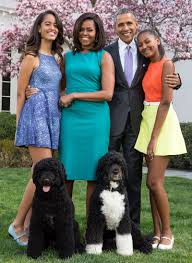 potus pet peeve sunny the dog likes doing her business right