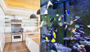 treating aquarium water