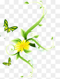 simple flower vine png images vectors and psd files free