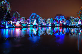 national zoo christmas lights google image result for http icons ak wunderground com data