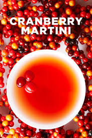 christmas martini recipes best 25 cranberry martini ideas on pinterest martini orange
