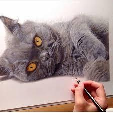 724 best art coloured pencils images on pinterest coloured
