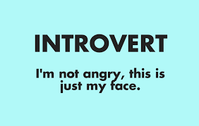quotes express anger introvert i u0027m not angry this is just my face introvert spring