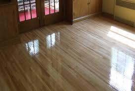 impressive on best flooring for pets best laminate flooring for
