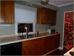 kitchen cabinet refinishing products cabinet refinishing kit before and after from kitchen cabinet
