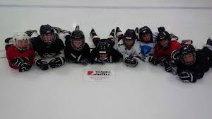 Floor Hockey Unit Plan by Home