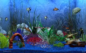 wallpaper ikan bergerak untuk pc wallpaper aquarium bergerak untuk pc 1000 aquarium ideas