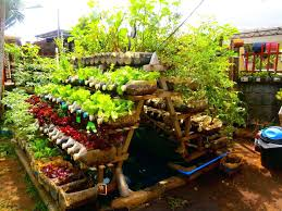 Small Vegetable Garden Ideas Small Backyard Vegetable Garden Ideas Image For Garden Ideas