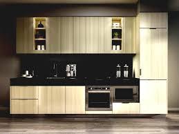 Small Condo Kitchen Designs Christmas Ideas Free Home Designs
