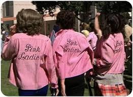Pink Ladies Halloween Costumes Pink Ladies Costume Diy Halloween Gina Kiely