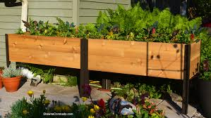 how to plant an elevated garden bed shawna coronado
