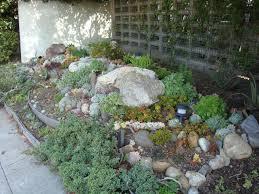 Succulent Rock Garden by Girl On Bike Succulent Garden Fun With Drought Tolerant Plants