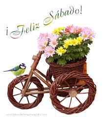 descargar imagenes de feliz sabado gratis imágenes de flores para decir feliz sábado descargar imágenes gratis