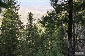 Mt Lemmon Hiking Trails Map Hiking Butterfly Trail On Mount Lemmon American Expeditioners