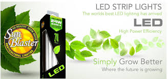 Led Strip Light Power Consumption by Sunblaster Led Horticultural Strip Lighting Sunblaster Lighting