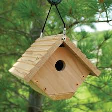 Cool Bird House Plans Amazon Com Audubon Traditional Wren House Model Nawren