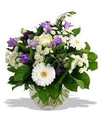 Orchid Delivery Best 25 Orchid Delivery Ideas On Pinterest Orchid Wedding