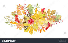 Thanksgiving Leaf Template Beautiful Hand Painted Watercolor Bouquet Clipart Stock