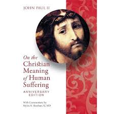 paul ii on the christian meaning of human suffering the