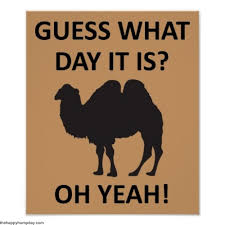May Day Meme - 10 funny happy hump day meme that help you to laugh on this boring