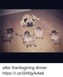 25 best memes about day after thanksgiving day after