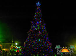 san pedro counts down to christmas with tree lighting ceremony
