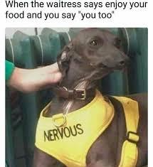 Nervous Meme - nervous doggo meme by nerdn memedroid