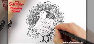 how to draw a simple sketch of a thanksgiving turkey drawing