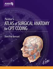Netter Atlas Of Human Anatomy Online Ama Store Netter U0027s Atlas Of Surgical Anatomy For Cpt Coding