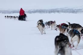 northern lights womens tour finland womens vacation helsinki