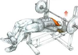 Flat And Incline Bench How To And Tips Decline Bench Press Fitdefinition