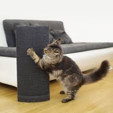 Cat Scratch Lounge Best Cat Scratching Post Reviews Of 2017 At Topproducts Com