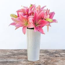 Bouquet Of Lilies Compassion Pink Asiatic Lily Bouquet The Bouqs Co