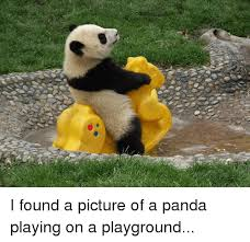 Funny Panda Memes - i found a picture of a panda playing on a playground funny meme