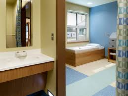revisions to the 2014 guidelines for psychiatric hospitals array