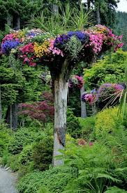 83 best beautiful gardens images on pinterest beautiful gardens