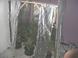 chambre de culture cannabis complete la ventilation de la culture de cannabis du growshop