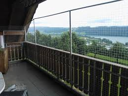 katzennetz balkon balkonnetz fotos katzen balkon netze katzennetze