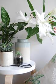 styling a little botanical corner with laura ashley cate st hill