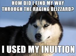 Husky Meme - heroic pun husky meme on imgur