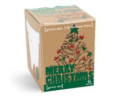 grow me christmas tree amazon co uk garden u0026 outdoors