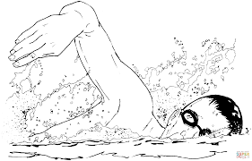 100 elasmosaurus coloring page 17 best images about dinosauria